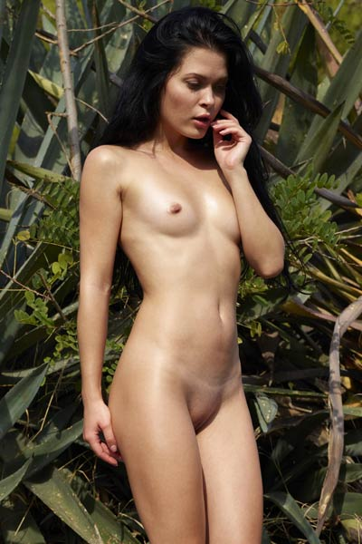 Sexy girl with nice titties and rounded booty stripping and posing naked outdoors