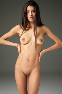 Dark haired chick is not shy to pose naked in front of the camera objective