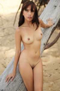 Stunning Asian beauty poses on the beach while displaying her lustful body and passionate look